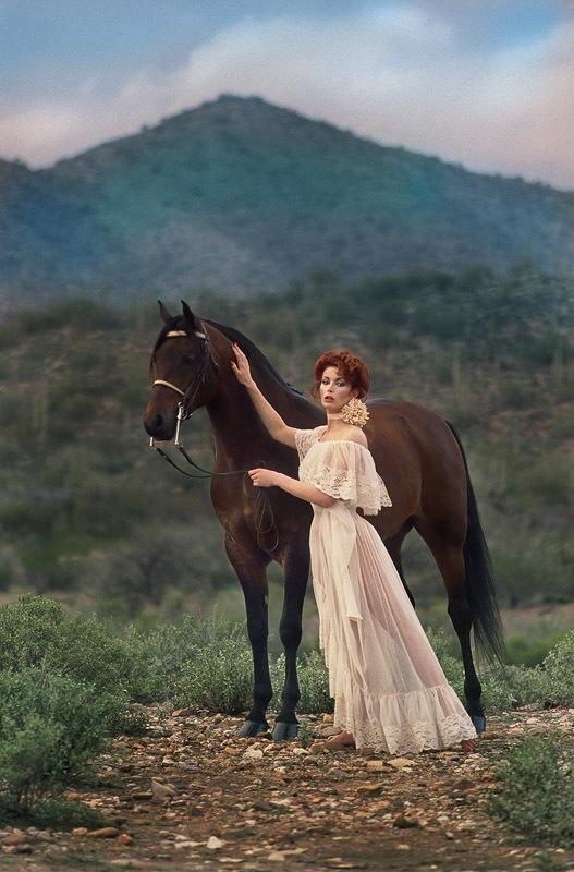 LINDA-BROOKS-HORSE-2